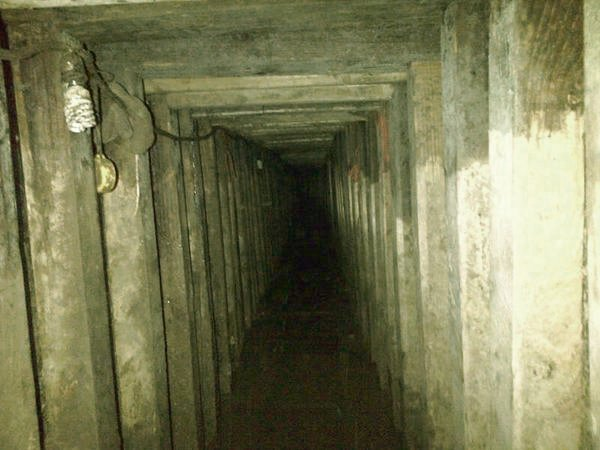 narcotunel
