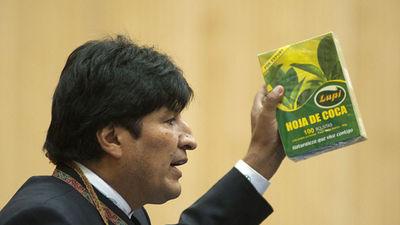Evo_Morales-hoja_de_Coca-ONU_MDSIMA20120312_0496_5