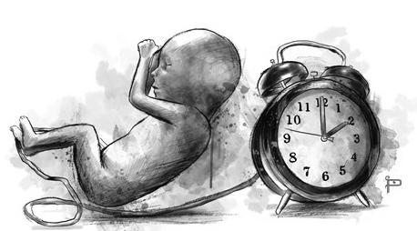 indice de mortalidad materna3