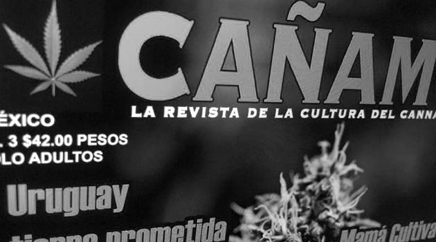 """El gobierno mexicano ataca a una revista sobre cannabis por """"burlar las buenas costumbres"""""""