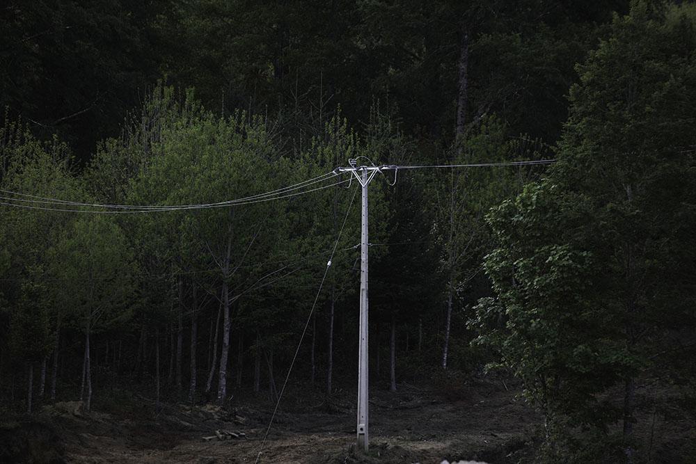 Tendido electrico de la hidroelectrica pasa entre el bosque de Tranguil.©Ruta35r/Cristobal Saavedra