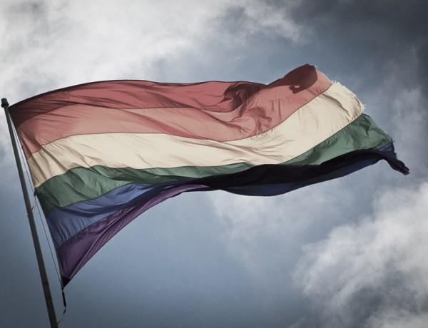 bandera diversidad