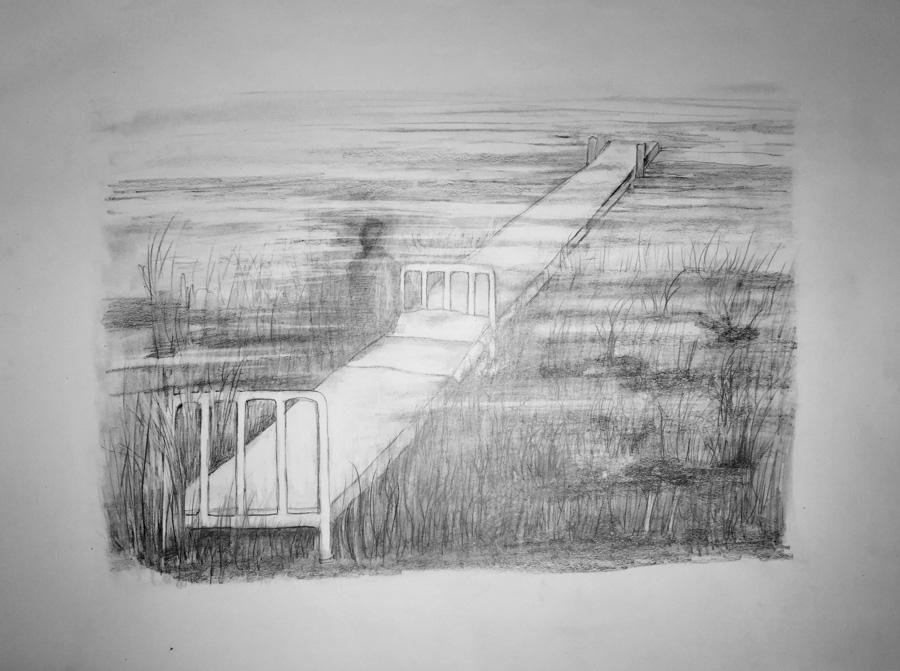 pichot-dibujos006