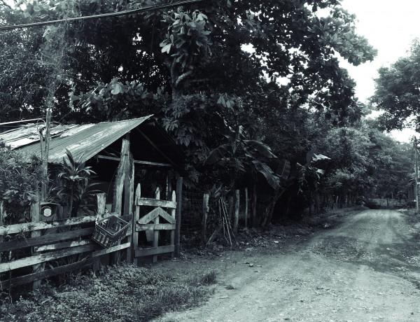 Femicidio Costa Rica