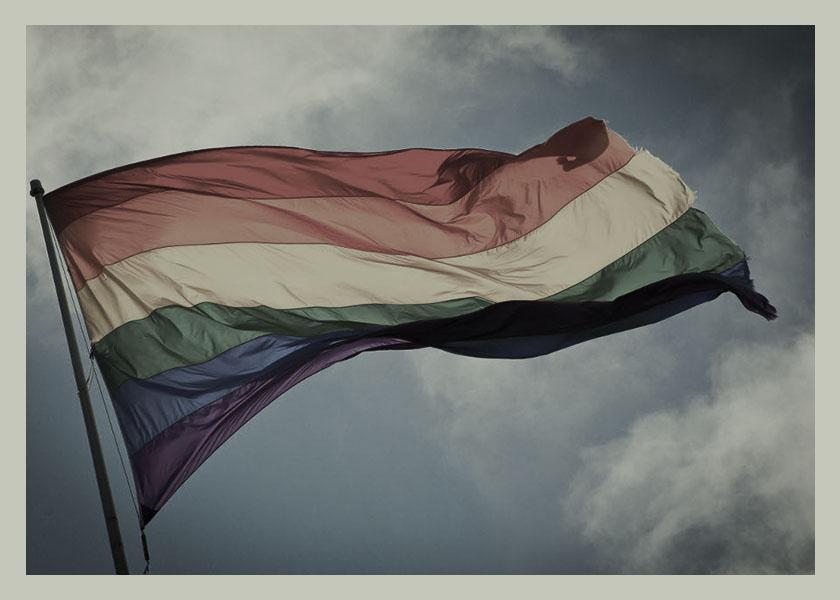 bandera-orgullo