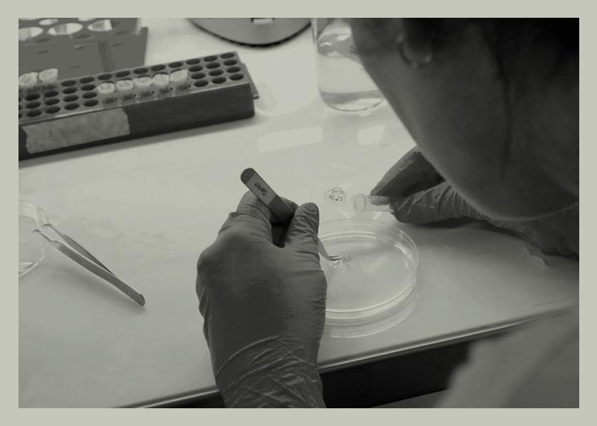 Coronavirus: ciencia vs paranoia