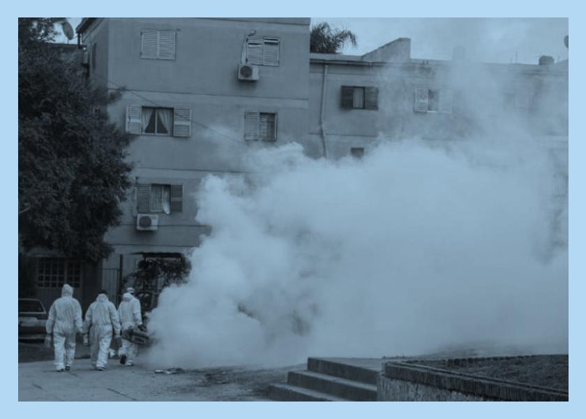 dengue tucuman home