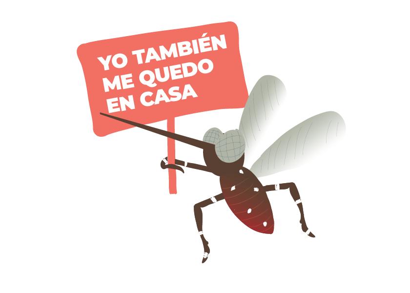 Dengue o coronavirus: qué nos atacará primero
