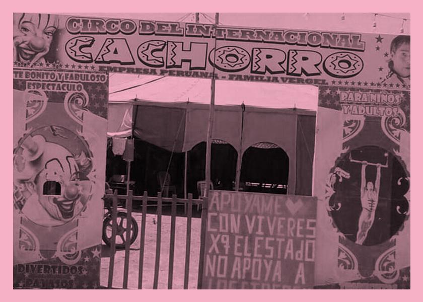 circo home