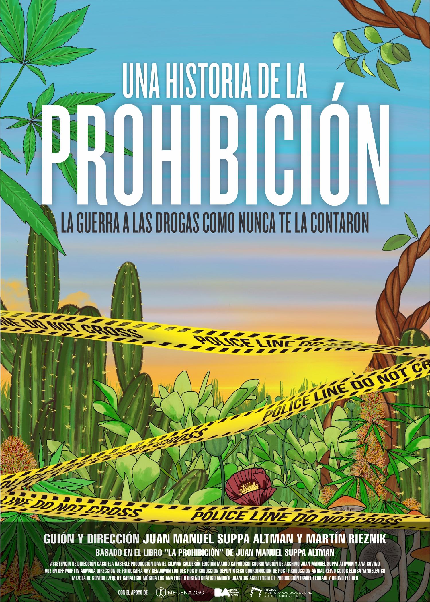 Afiche Una historia de la prohibicion
