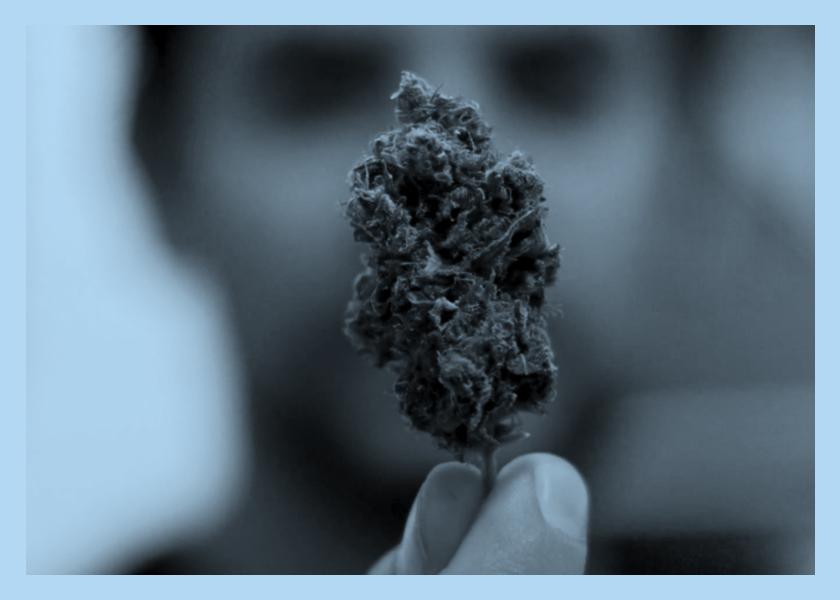 """""""Una historia sobre la prohibición"""": la guerra a las drogas como nunca te la contaron"""