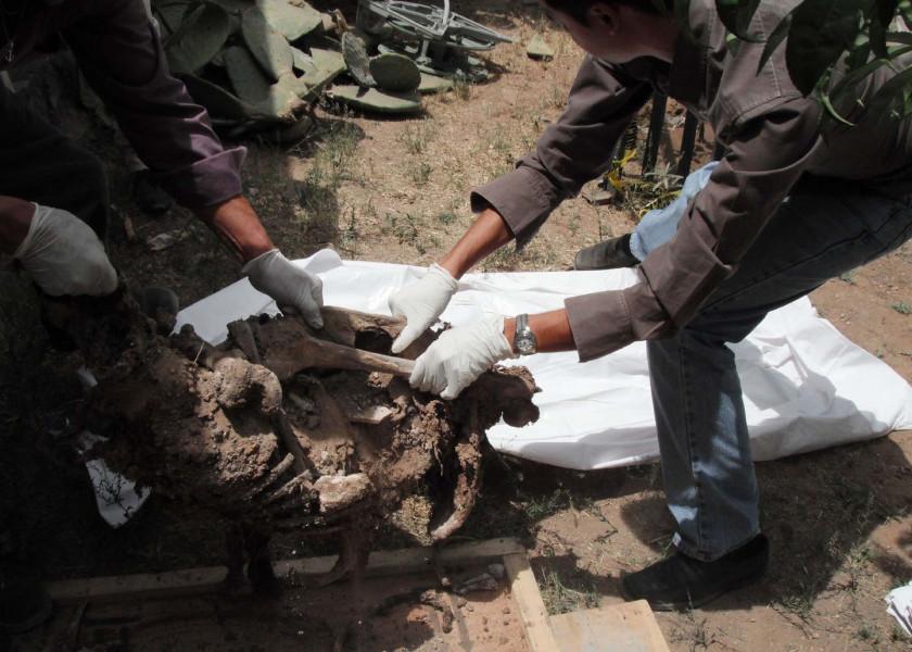 Agentes de la fiscalía general del estado de Durango ayudan a peritos del Semefo en la recuperación de restos humanos en las fosas encontradas en el fraccionamiento Las Fuentes. Crédito: Jorge Valenzuela.