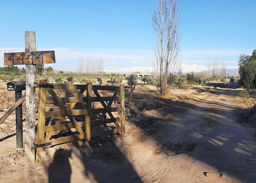 finca - Rodeo del Medio - Mendoza - Lucía Fernandez